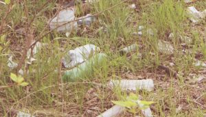 Заказать контейнер для вывоза мусора