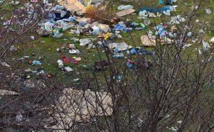 Вывоз мусора в Пушкино