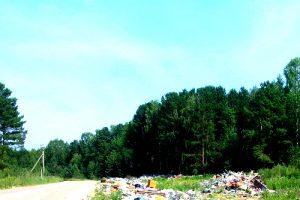 Вывоз мусора в Щелково