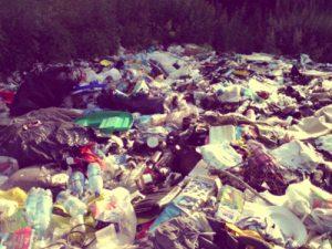 Вывоз мусора в Лотошино