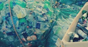 Вывоз мусора в Звенигороде