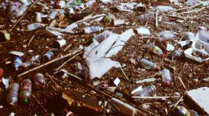 Работы по вывозу мусора в Клину
