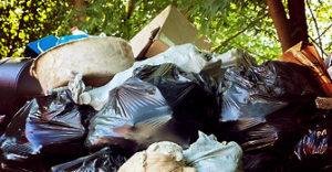 Работы по вывозу мусора в Жуковском