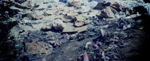 Услуги вывоза мусора в Люберцах