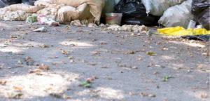 Вывоз бытового мусора в Видном