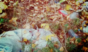 Вывоз бытовых отходов в Лобне