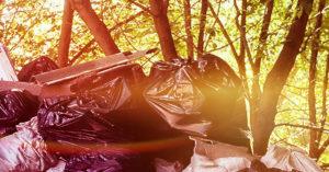 Вывоз и утилизация мусора в Зеленограде