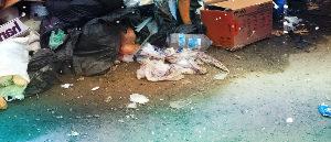 Вывоз мусора ТБО во Фрязино