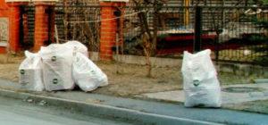 Вывоз мусора и старой мебели в Лотошино