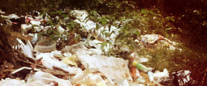 Вывоз мусора в Егорьевске грузчиками