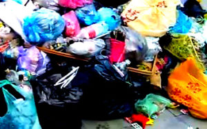 Вывоз мусора в Поварово