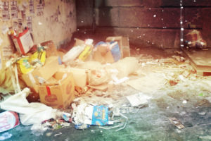 Вывоз отходов в Барвихе компанией