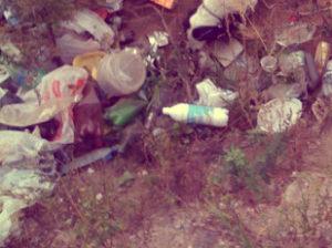 Вывоз мусора в Яхроме