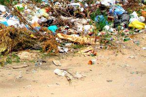 Вывоз мусора в Тучково