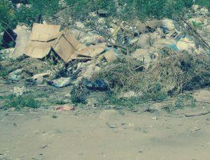 Вывоз строительного мусора в Новопетровском