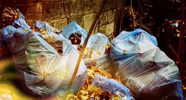 Цены на вывоз мусора в Ивантеевке
