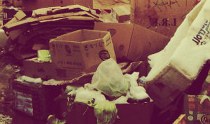 Услуги утилизации мусора в Тучково