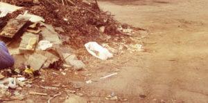 Услуги вывоза мусора в Щелково