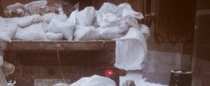 Вывоз бытового мусора в Можайске
