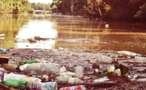 Вывоз мусора в Дмитрове Московской области