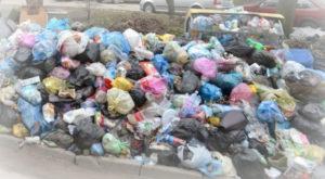 Вывоз мусора в Красной Пахре