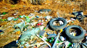 Вывоз мусора в Электрогорске