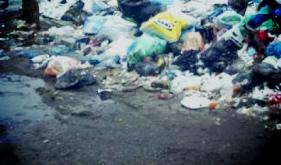 Работы по вывозу мусора в Крекшино