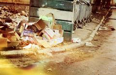 Услуги по вывозу мусора в Протвино