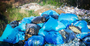 Услуги по вывозу мусора в Вороново