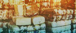 Услуги вывоза отходов в Барыбино