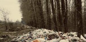 Заказать вывоз мусора в Икше